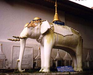 Statue of the peripatetic elephant that selected the site for a temple in Chiang Mai. Copyright David Priest